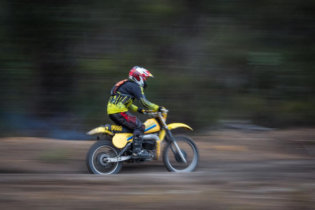 Collie Vinduro 2015-658